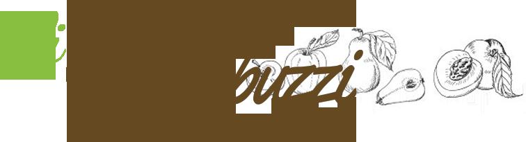 Susino morettini 355 piante di susino vivai giacopuzzi for Vivai piante da frutto